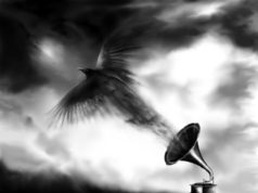 Those Damn Crows Murder And The Motive Album Cover