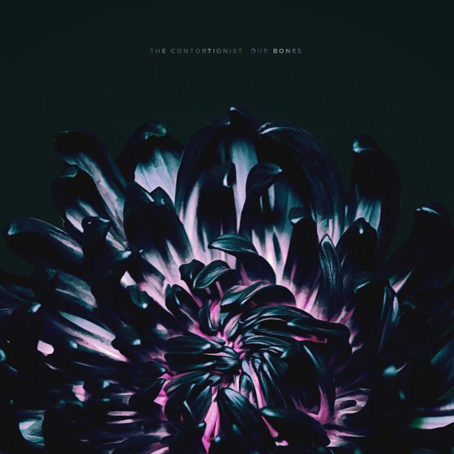 The Contortionist - Our Bones EP Cover Artwork